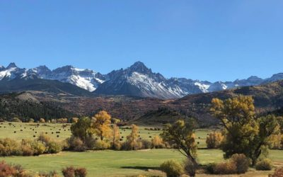 Explore with Day Trips from Ouray, Colorado