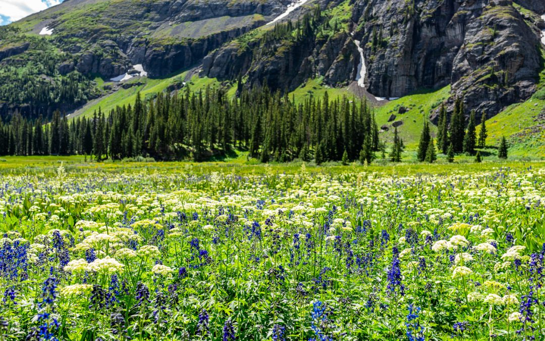 Ouray in spring, CO | Stay at the Ouray Chalet Inn