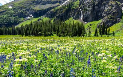 Scenic Spring Drives around Ouray